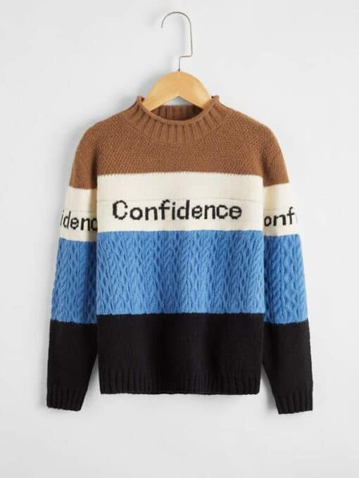 SHEIN Boys Letter Pattern Colorblock Cable Knit Sweater