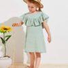 SHEIN Toddler Girls Ruffle Trim Dress