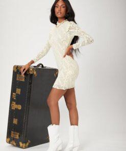SHEIN Frilled Trim Lace Bodycon Dress